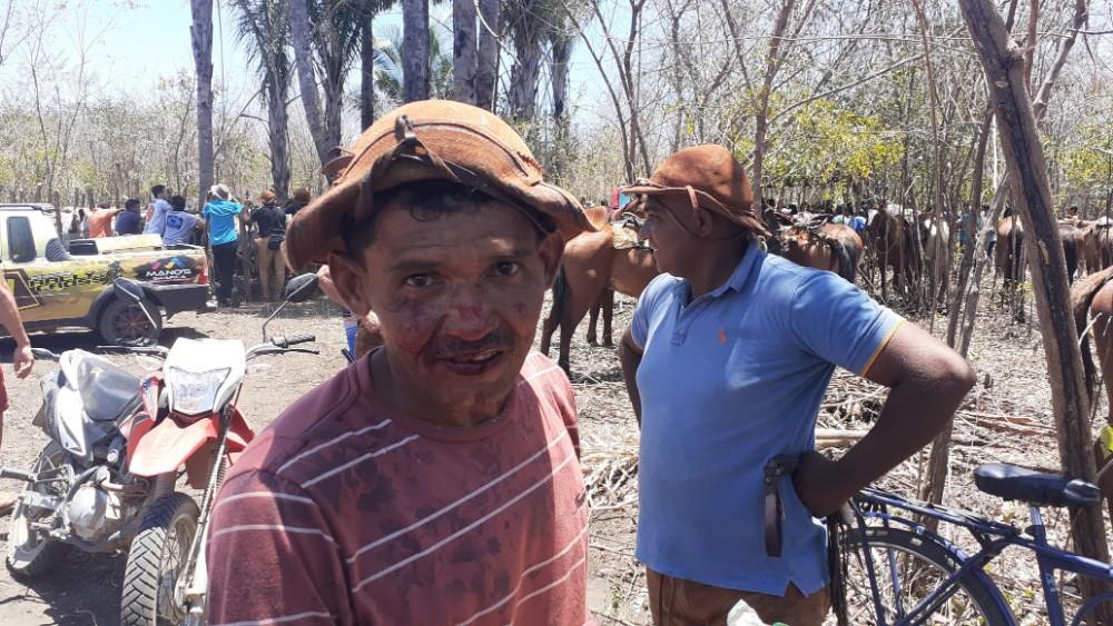 Veja como foi a primeira Pega de Boi na Mata da Fazenda Sumidor