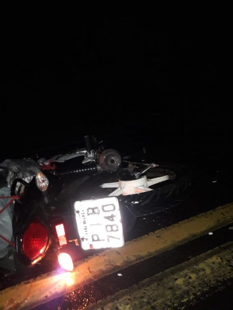 Mais uma vítima que tomba no asfalto envolvendo animais